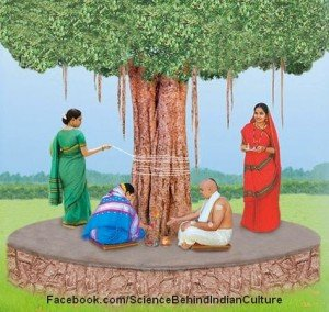 Scientific Reason behind why Some Trees are considered Sacred in India ?
