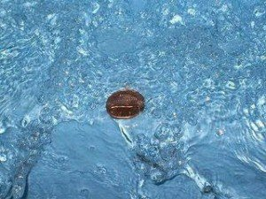 Why Indians Throw Coins In To Holy Rivers ? (updated)